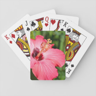 Michigan, Dearborn. Detail Of Pink Hibiscus Playing Cards