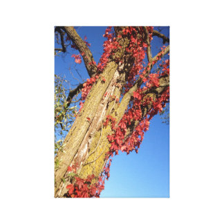 Michigan in Fall Red Tree (1) Printed Canvas Canvas Print