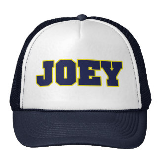 michigan logo style,esp for Joey Mesh Hats