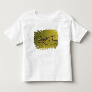 Michigan, Rochester Hills. Praying Mantis on Toddler T-Shirt