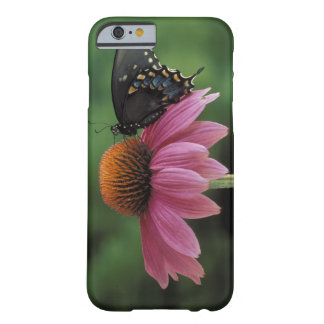 Michigan, Rochester. Spicebush Swallowtail on Barely There iPhone 6 Case
