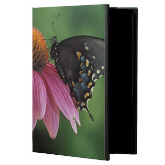 Michigan, Rochester. Spicebush Swallowtail on iPad Air Cases