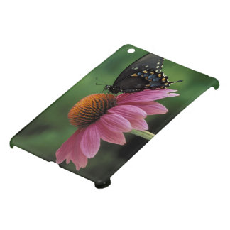 Michigan, Rochester. Spicebush Swallowtail on iPad Mini Cover