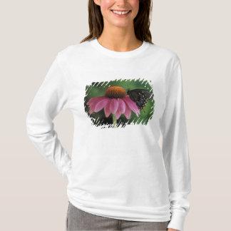 Michigan, Rochester. Spicebush Swallowtail on T-Shirt