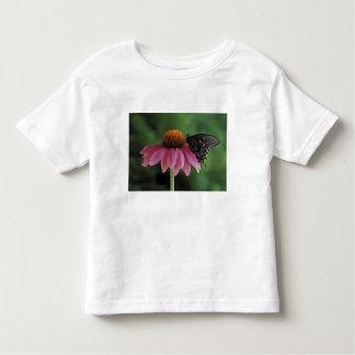 Michigan, Rochester. Spicebush Swallowtail on Toddler T-Shirt