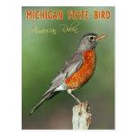 Michigan State Bird - American Robin Postcard