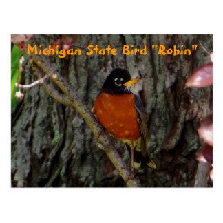 "Michigan State Bird ""Robin"" Postcard"
