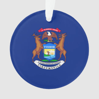 Michigan State Flag Design