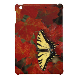 Michigan, Wetmore. Tiger Swallowtail on maple iPad Mini Cases