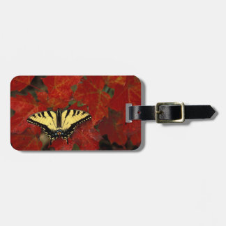 Michigan, Wetmore. Tiger Swallowtail on maple Luggage Tag