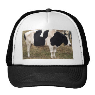 Micky Mouse Cow Cap