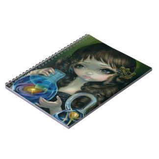 """Microcosm:  Galaxy"" Notebook"