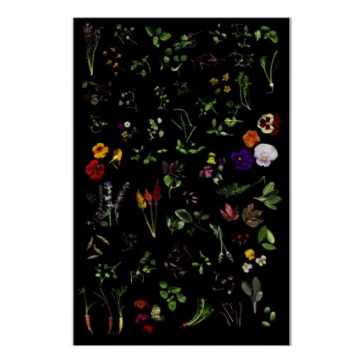 Microgreens Poster