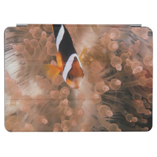 Micronesia, Palau, Anemonefish iPad Air Cover