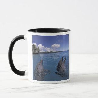 Micronesia, Palau Bottlenose dolphins Mug