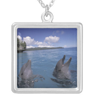 Micronesia, Palau Bottlenose dolphins Silver Plated Necklace