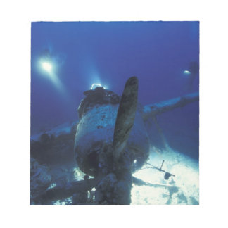 Micronesia, Palau, World Heritage Site. Divers Notepad