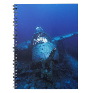 Micronesia, Palau, World Heritage Site. WWII Notebooks
