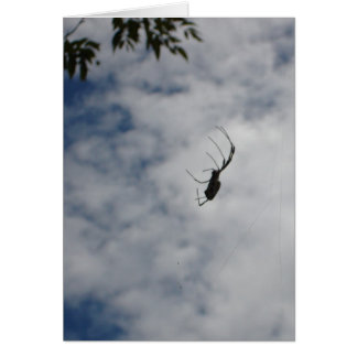 Mid-air Spider notecard Note Card