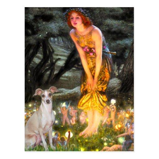 Mid Eve - Italian Greyhound 5 Postcard