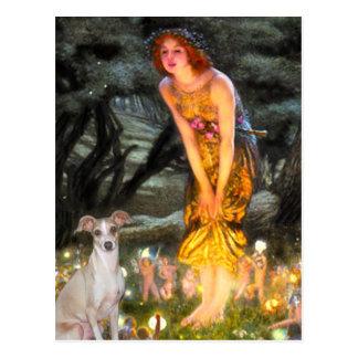 Mid Eve - Italian Greyhound 5 Postcards