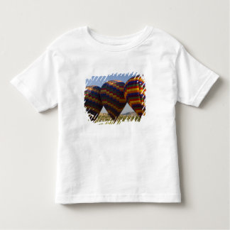 Middle East central part of Turkey in Cappadocia 2 Toddler T-Shirt