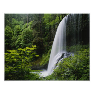 Middle North falls Silver Falls State Park Posters