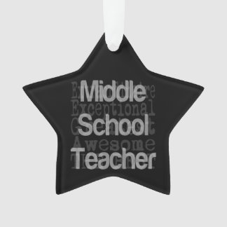 Middle School Teacher Extraordinaire Ornament