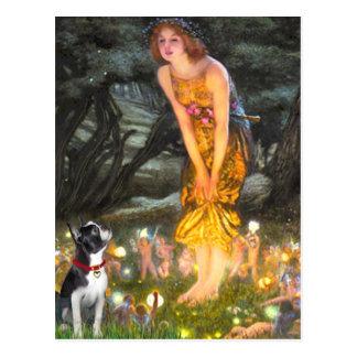 MidEve - Boston Terrier #2 Post Card