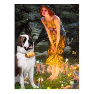 MidEve - Saint Bernard Post Cards