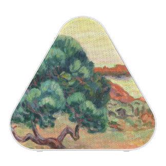 Midi Landscape, 1898 (oil on canvas)