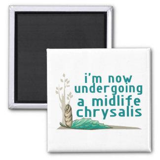 Midlife Chrysalis Square Magnet