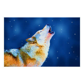 Midnight Howl Poster