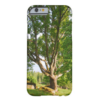 Midsummer Light Småland Barely There iPhone 6 Case