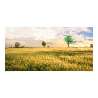 Midwest Field Painting Customized Photo Card