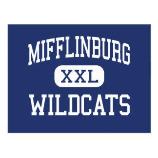 Mifflinburg Wildcats Middle Mifflinburg Postcard