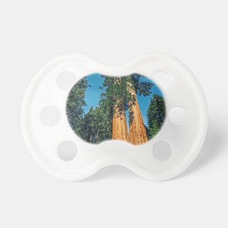 Mighty Redwood Pacifier