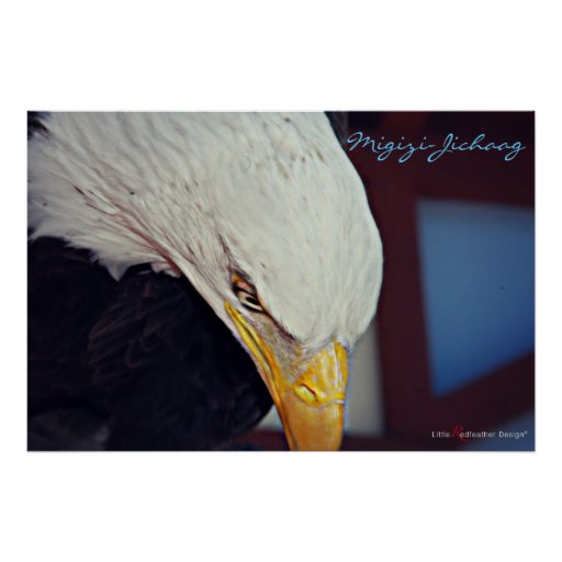 Migizi (Bald Eagle) is our Spirit Poster