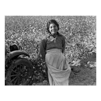 Migrant  Worker next to a Cotton Field Poster
