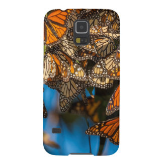 Migrating monarch butterflies cling to leaves galaxy s5 cover