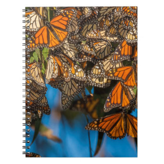 Migrating monarch butterflies cling to leaves spiral notebook