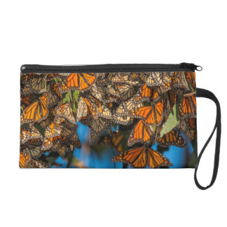Migrating monarch butterflies cling to leaves wristlet