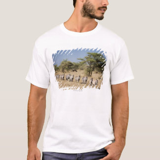 Migrating zebra, Tanzania T-Shirt
