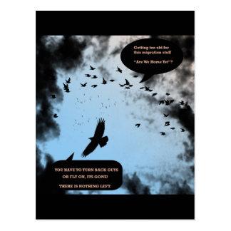 """Migration Birds In Turmoil""* Postcard"