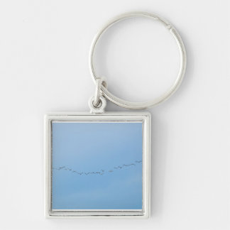 migratory birds Silver-Colored square key ring