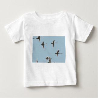 migratory birds tshirts