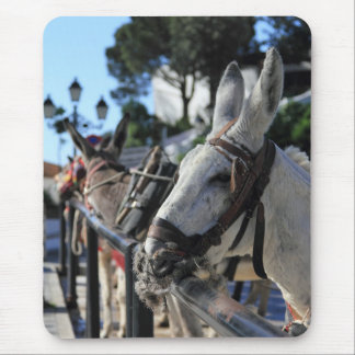 Mijas Donkeys Mousepad