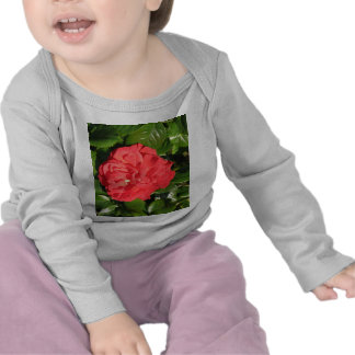 Mikado Hybrid Tea Rose 007 Tshirt