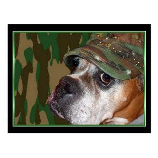 Military Boxer dog postcard