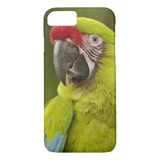 Military macaw (Ara militaris) CAPTIVE. Amazon iPhone 7 Case